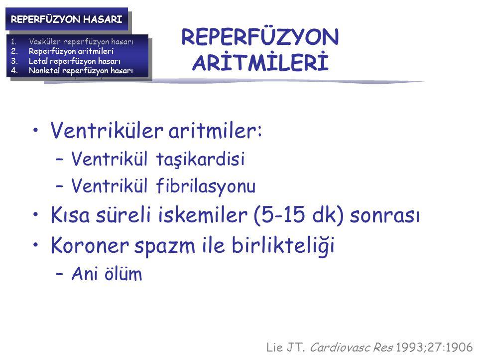 REPERFÜZYON ARİTMİLERİ Ventriküler aritmiler: –Ventrikül taşikardisi –Ventrikül fibrilasyonu Kısa süreli iskemiler (5-15 dk) sonrası Koroner spazm ile birlikteliği –Ani ölüm Lie JT.