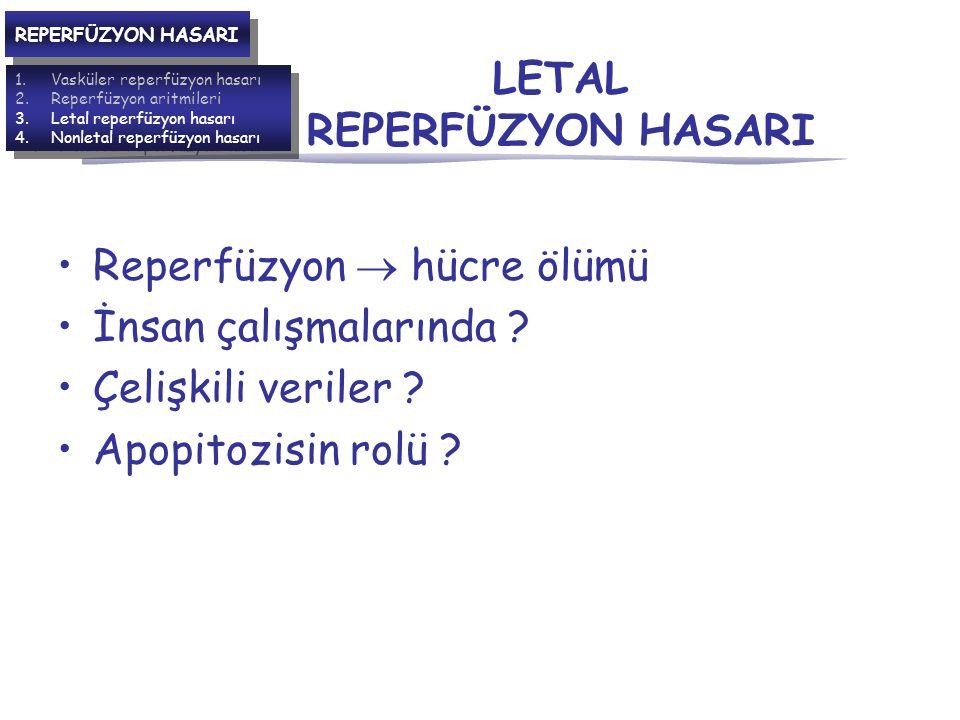 LETAL REPERFÜZYON HASARI Reperfüzyon  hücre ölümü İnsan çalışmalarında .