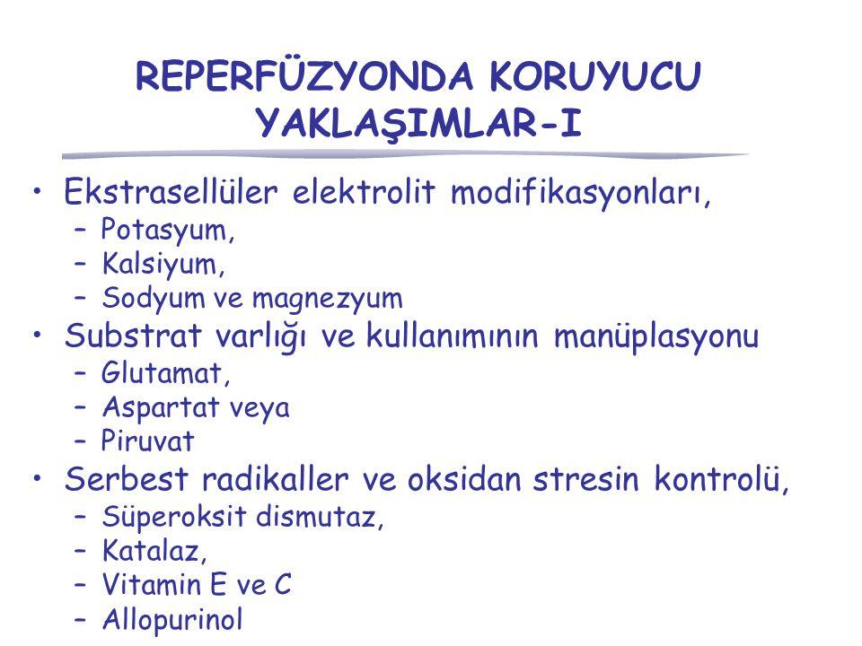 REPERFÜZYONDA KORUYUCU YAKLAŞIMLAR-I Ekstrasellüler elektrolit modifikasyonları, –Potasyum, –Kalsiyum, –Sodyum ve magnezyum Substrat varlığı ve kullanımının manüplasyonu –Glutamat, –Aspartat veya –Piruvat Serbest radikaller ve oksidan stresin kontrolü, –Süperoksit dismutaz, –Katalaz, –Vitamin E ve C –Allopurinol