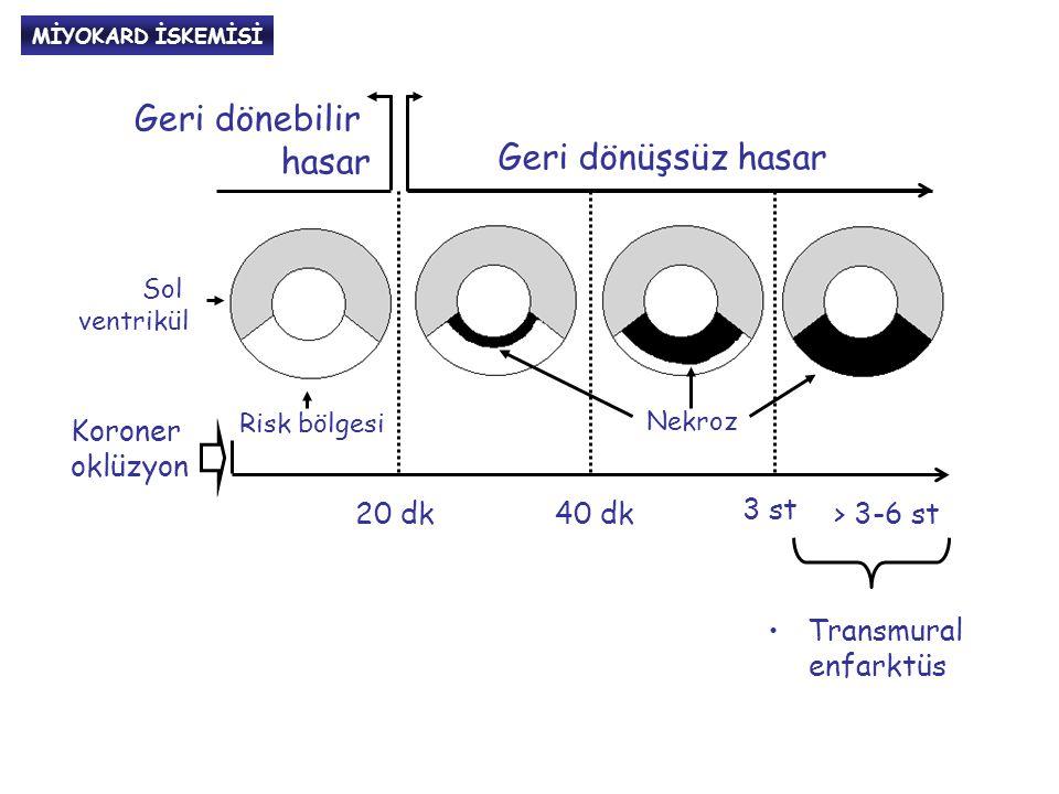 Geri dönebilir hasar Risk bölgesi Nekroz 20 dk40 dk 3 st > 3-6 st Geri dönüşsüz hasar Sol ventrikül Koroner oklüzyon Transmural enfarktüs MİYOKARD İSKEMİSİ