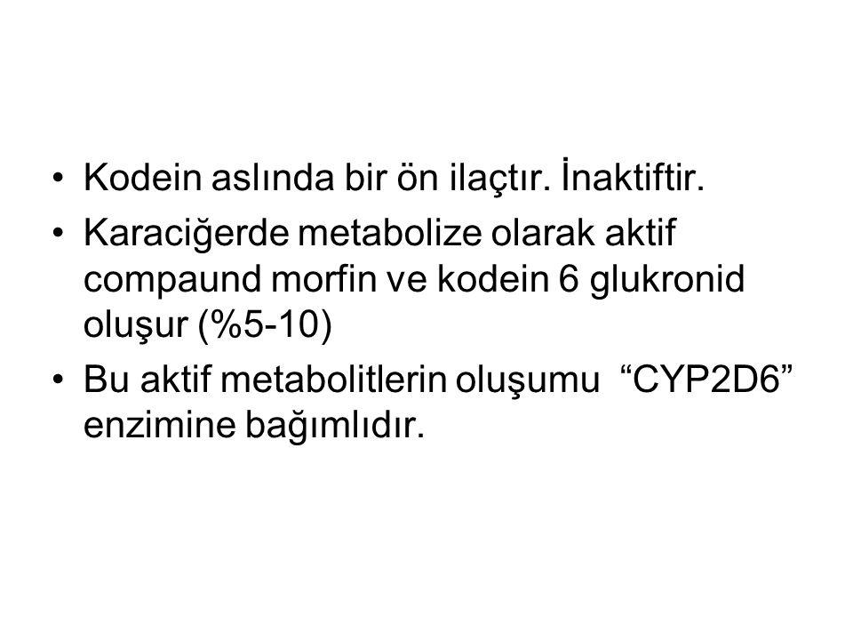 Kodein aslında bir ön ilaçtır. İnaktiftir. Karaciğerde metabolize olarak aktif compaund morfin ve kodein 6 glukronid oluşur (%5-10) Bu aktif metabolit