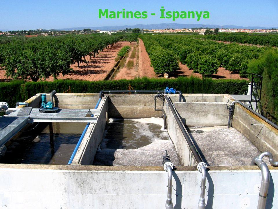 Marines - İspanya