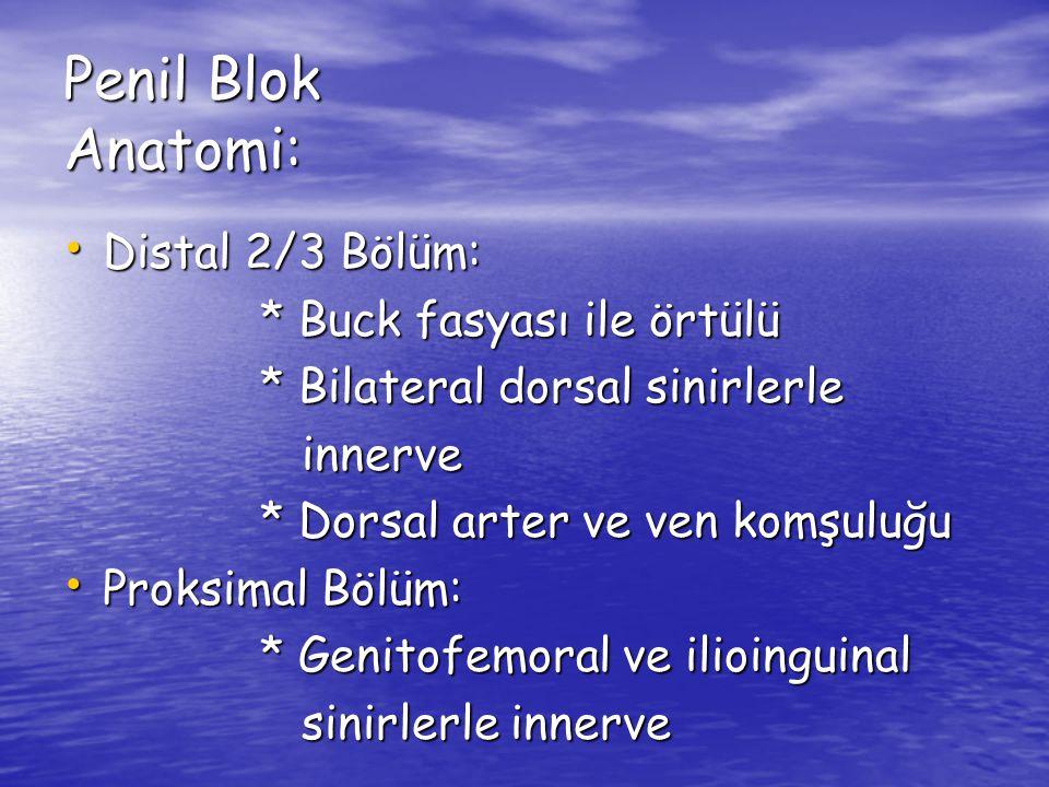 Penil Blok Anatomi: Distal 2/3 Bölüm: Distal 2/3 Bölüm: * Buck fasyası ile örtülü * Buck fasyası ile örtülü * Bilateral dorsal sinirlerle * Bilateral