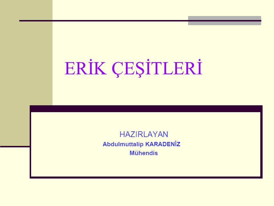 ERİK ÇEŞİTLERİ HAZIRLAYAN Abdulmuttalip KARADENİZ Mühendis