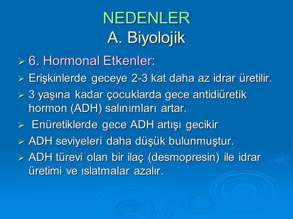 NEDENLER A.Biyolojik  6. Hormonal Etkenler:  Erişkinlerde geceye 2-3 kat daha az idrar üretilir.