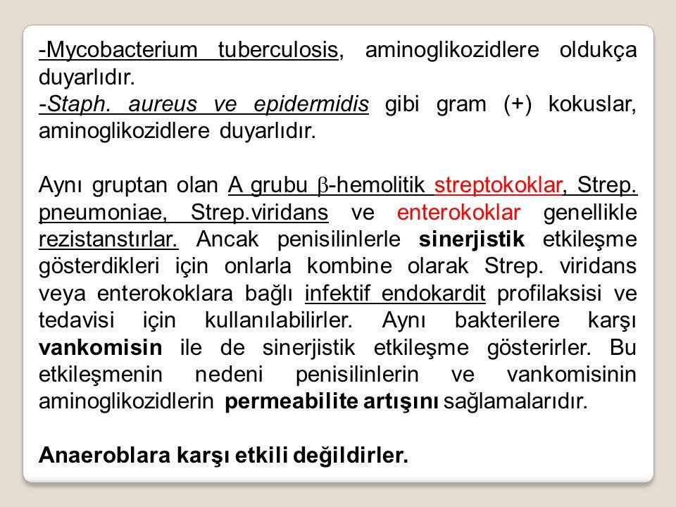 -Mycobacterium tuberculosis, aminoglikozidlere oldukça duyarlıdır. -Staph. aureus ve epidermidis gibi gram (+) kokuslar, aminoglikozidlere duyarlıdır.