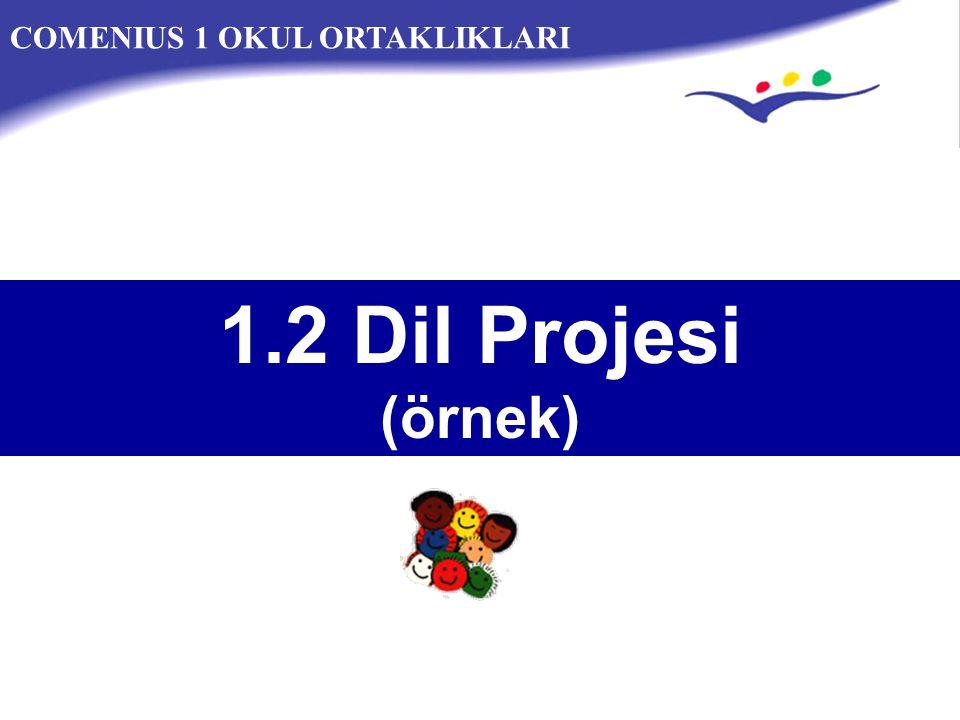 COMENIUS 1 OKUL ORTAKLIKLARI 1.2 Dil Projesi (örnek)