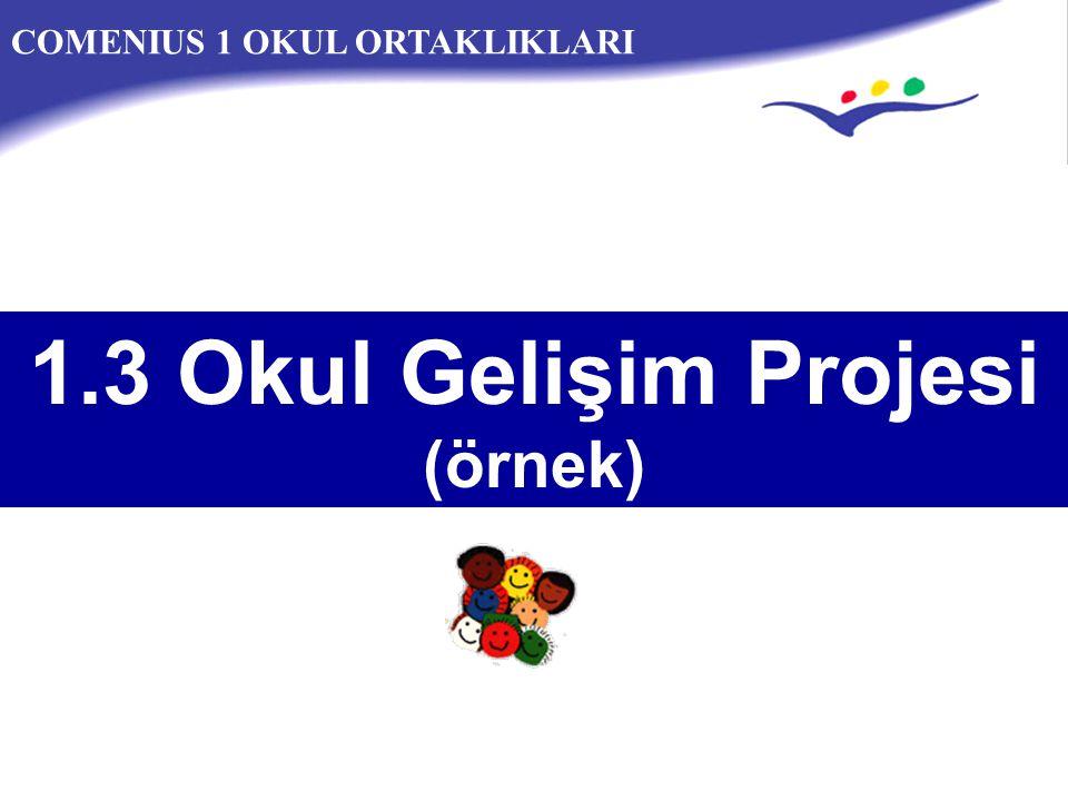 COMENIUS 1 OKUL ORTAKLIKLARI 1.3 Okul Gelişim Projesi (örnek)