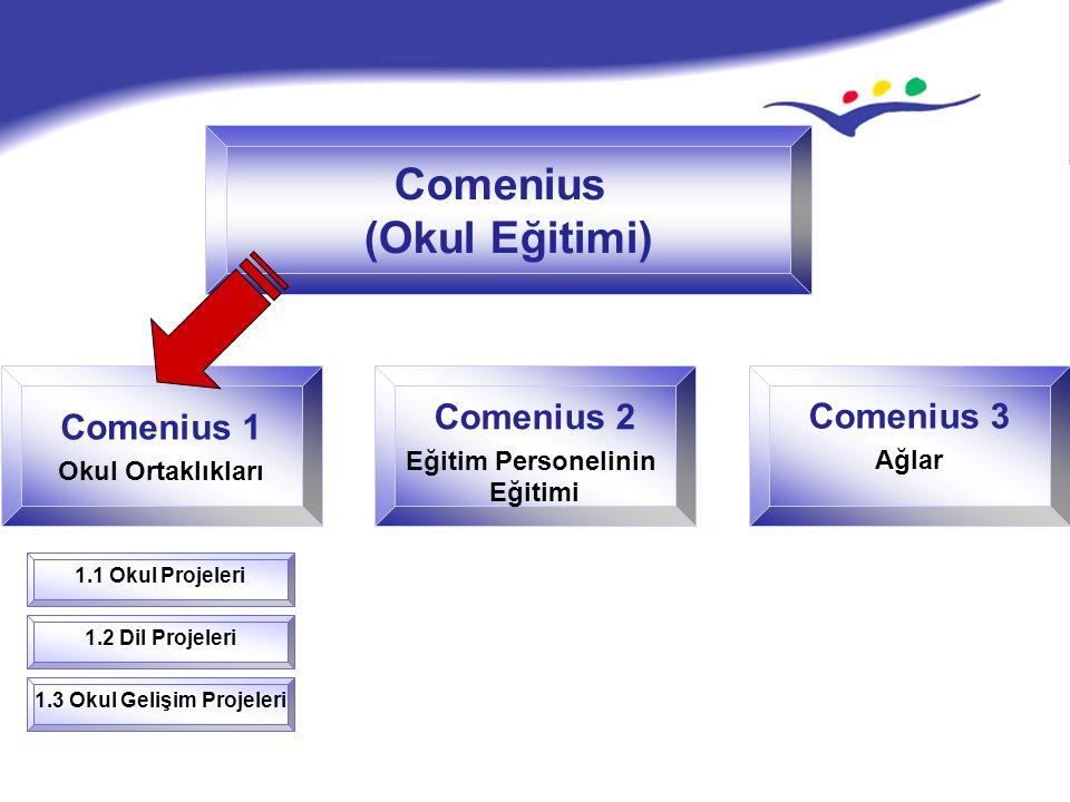 Comenius (Okul Eğitimi) Comenius 1 Okul Ortaklıkları 1.1 Okul Projeleri Comenius 2 Eğitim Personelinin Eğitimi Comenius 3 Ağlar 1.2 Dil Projeleri 1.3 Okul Gelişim Projeleri