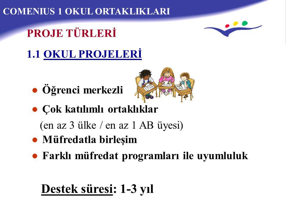 COMENIUS 1 OKUL ORTAKLIKLARI 1.1 Okul Projesi (örnek)