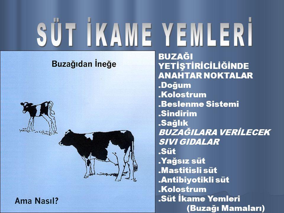 SÜT İKAME YEMİ (BUZAĞI MAMASI) Süt ikame yemleri süt yerine kullanılan toz haldeki yemlerdir.