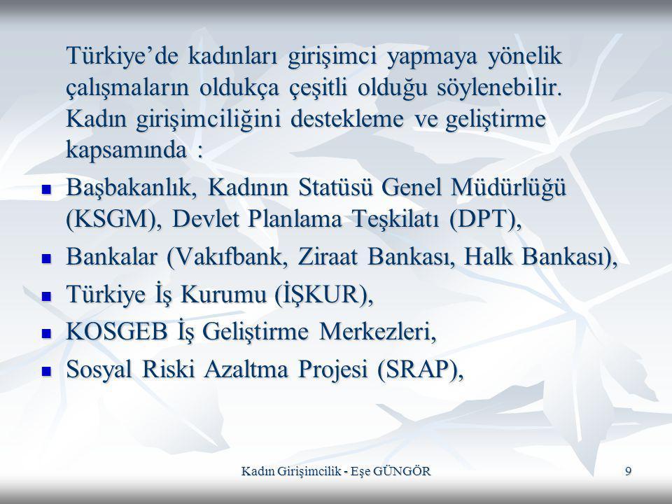 Kadın Girişimcilik - Eşe GÜNGÖR9 Türkiye'de kadınları girişimci yapmaya yönelik çalışmaların oldukça çeşitli olduğu söylenebilir. Kadın girişimciliğin