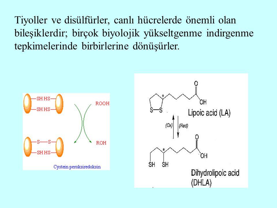 Tiyoller ve disülfürler, canlı hücrelerde önemli olan bileşiklerdir; birçok biyolojik yükseltgenme indirgenme tepkimelerinde birbirlerine dönüşürler.