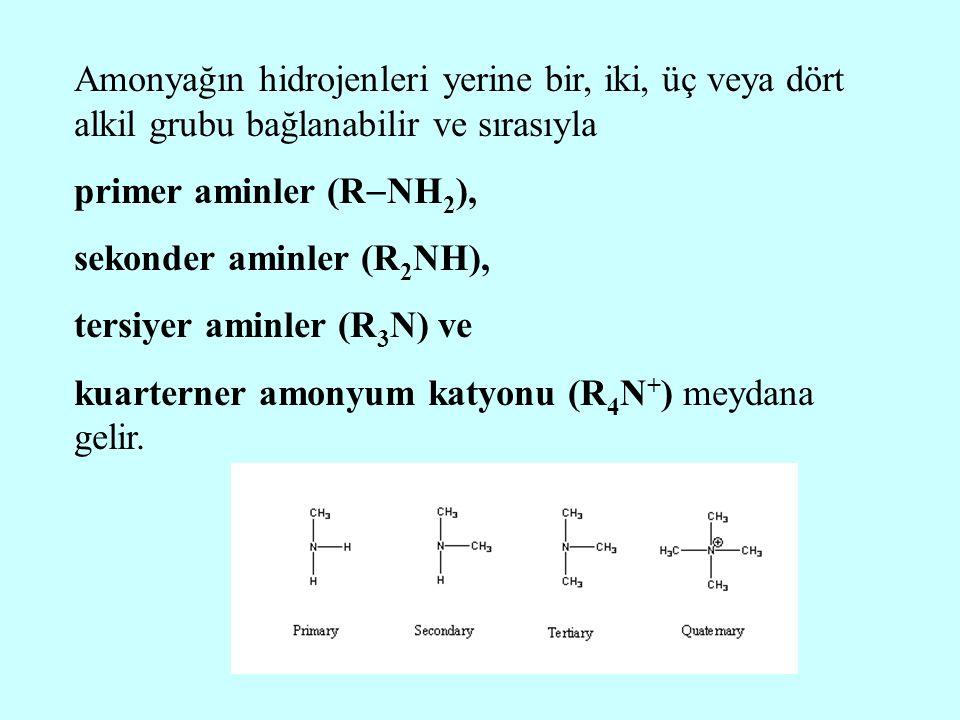 Amonyağın hidrojenleri yerine bir, iki, üç veya dört alkil grubu bağlanabilir ve sırasıyla primer aminler (R  NH 2 ), sekonder aminler (R 2 NH), ters