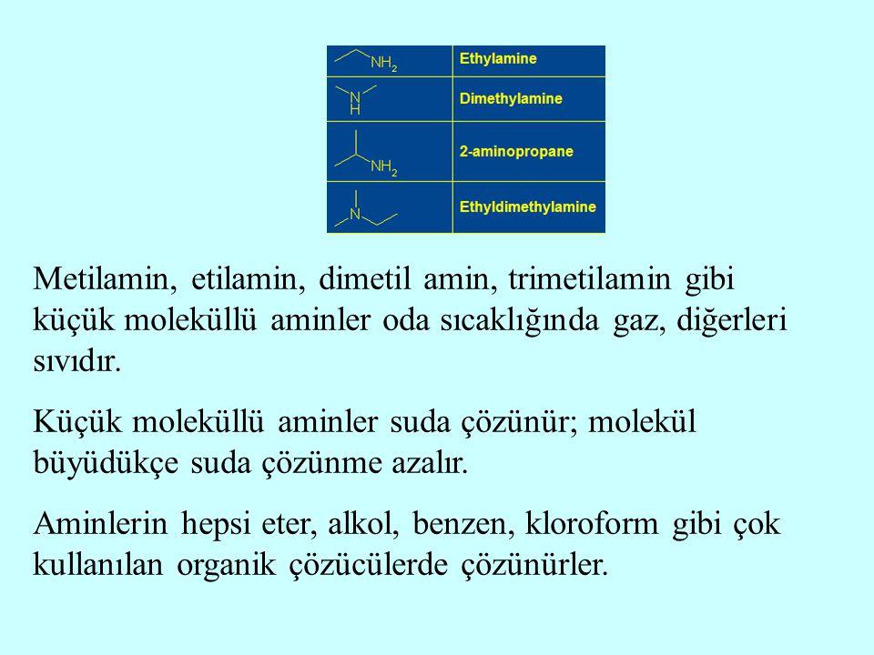 Metilamin, etilamin, dimetil amin, trimetilamin gibi küçük moleküllü aminler oda sıcaklığında gaz, diğerleri sıvıdır. Küçük moleküllü aminler suda çöz
