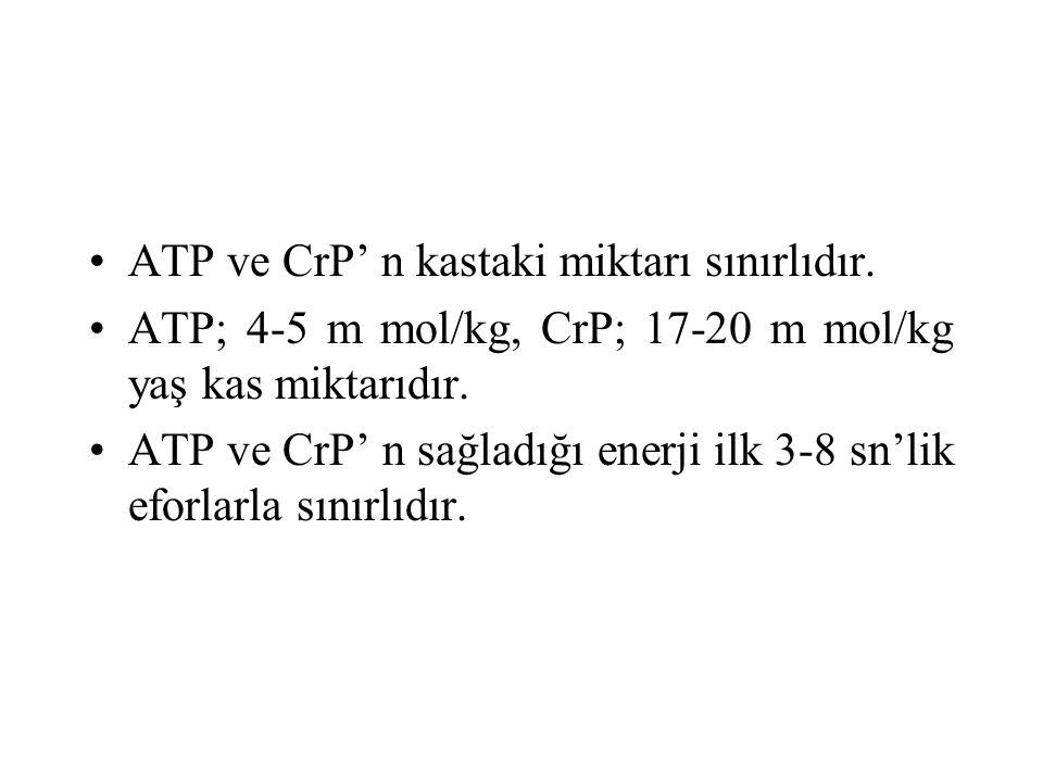 ATP ve CrP' n kastaki miktarı sınırlıdır. ATP; 4-5 m mol/kg, CrP; 17-20 m mol/kg yaş kas miktarıdır. ATP ve CrP' n sağladığı enerji ilk 3-8 sn'lik efo