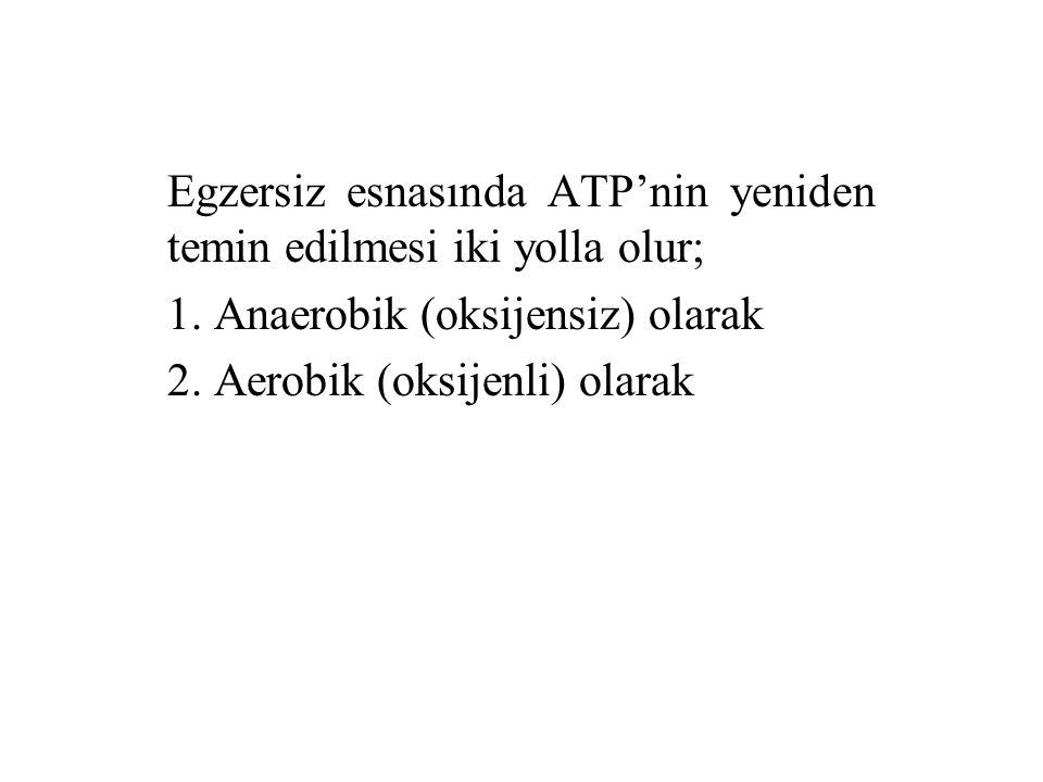 Egzersiz esnasında ATP'nin yeniden temin edilmesi iki yolla olur; 1. Anaerobik (oksijensiz) olarak 2. Aerobik (oksijenli) olarak