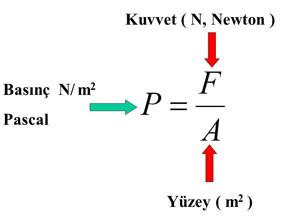 Yüzey ( m 2 ) Kuvvet ( N, Newton ) Basınç N/ m 2 Pascal