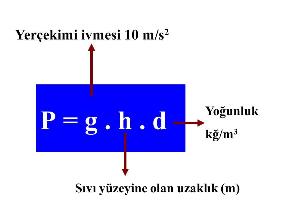 Yerçekimi ivmesi 10 m/s 2 Sıvı yüzeyine olan uzaklık (m) Yoğunluk kğ/m 3