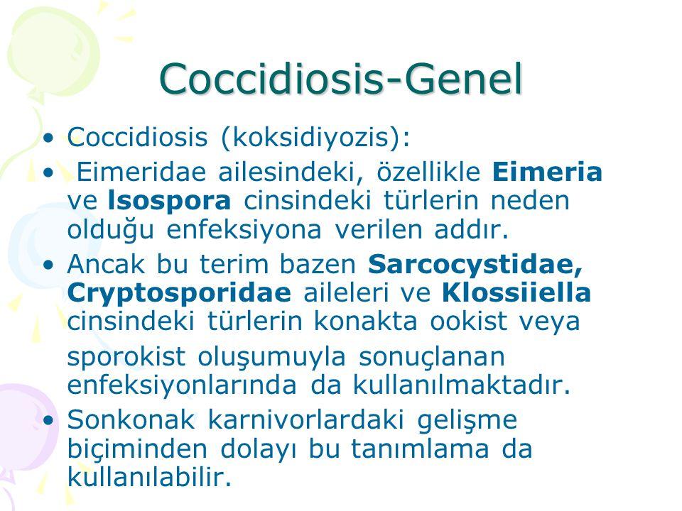 Coccidiosis-Genel Eimeria ve lsospora cinslerindeki türler etiyolojisini oluşturur.