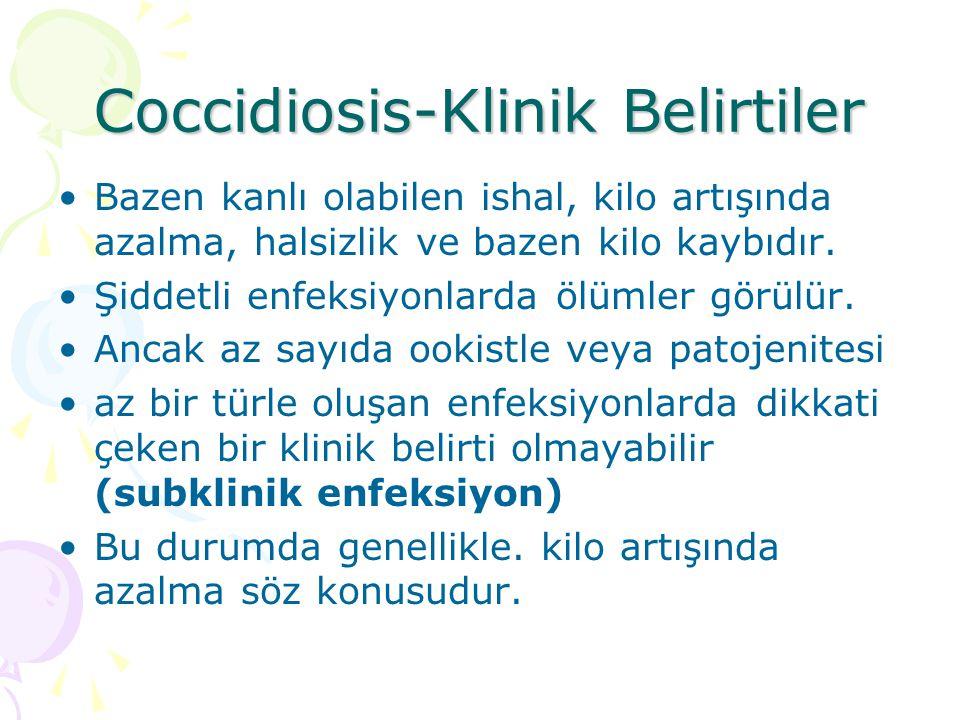 Coccidiosis Enfeksiyonun şiddeti üzerinde; Konağın bağışıklık durumu, Alınan sporlanmış ookist sayısı, Enfeksiyonu yapan türün patojenitesi, rol oynar.