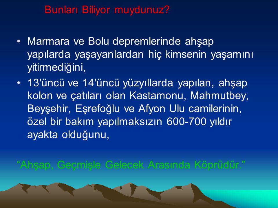 Bunları Biliyor muydunuz? Marmara ve Bolu depremlerinde ahşap yapılarda yaşayanlardan hiç kimsenin yaşamını yitirmediğini, 13'üncü ve 14'üncü yüzyılla