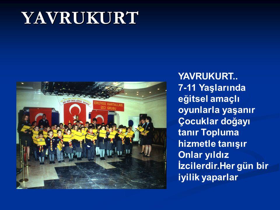 YAVRUKURT YAVRUKURT..