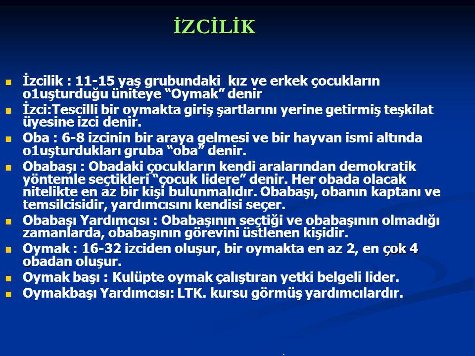 TİF ERKEK İZCİ ARMASI c. M.E.B.