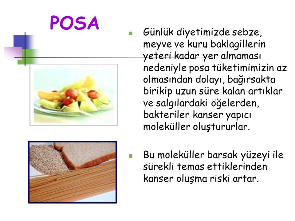 POSA Günlük diyetimizde sebze, meyve ve kuru baklagillerin yeteri kadar yer almaması nedeniyle posa tüketimimizin az olmasından dolayı, bağırsakta bir
