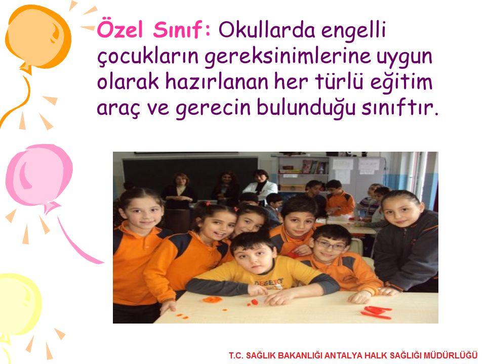 Özel Sınıf: O kullarda engelli çocukların gereksinimlerine uygun olarak hazırlanan her türlü eğitim araç ve gerecin bulunduğu sınıftır.