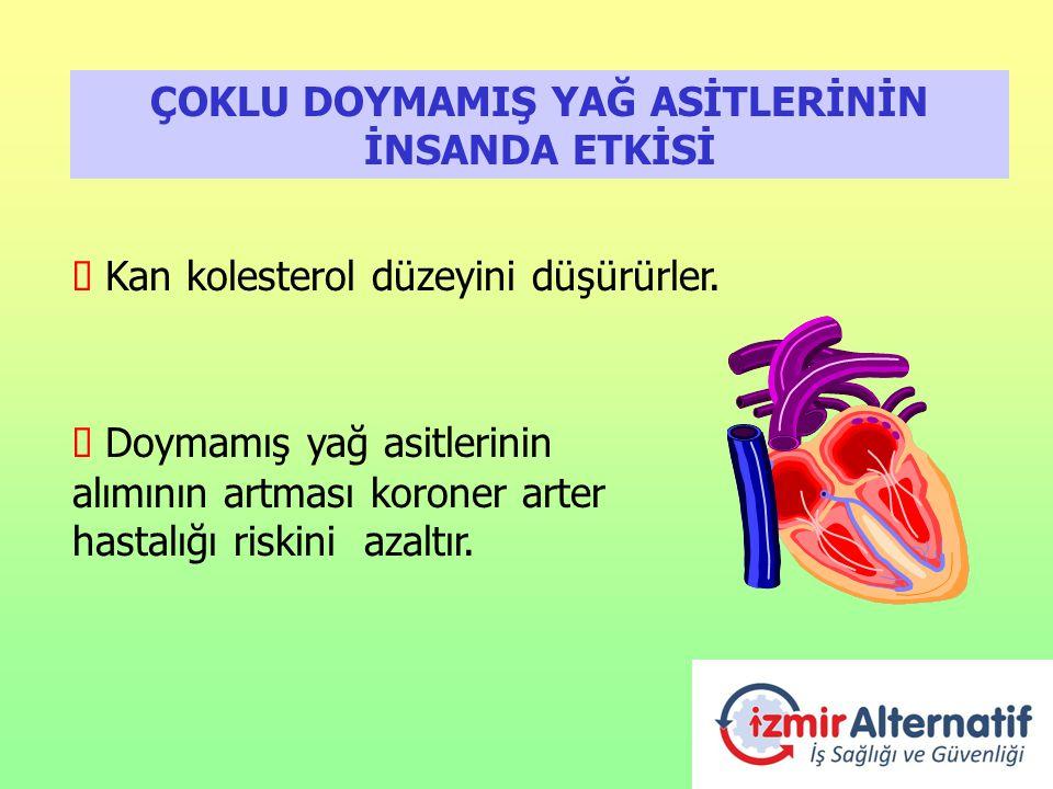 ÇOKLU DOYMAMIŞ YAĞ ASİTLERİNİN İNSANDA ETKİSİ è Kan kolesterol düzeyini düşürürler. è Doymamış yağ asitlerinin alımının artması koroner arter hastalığ