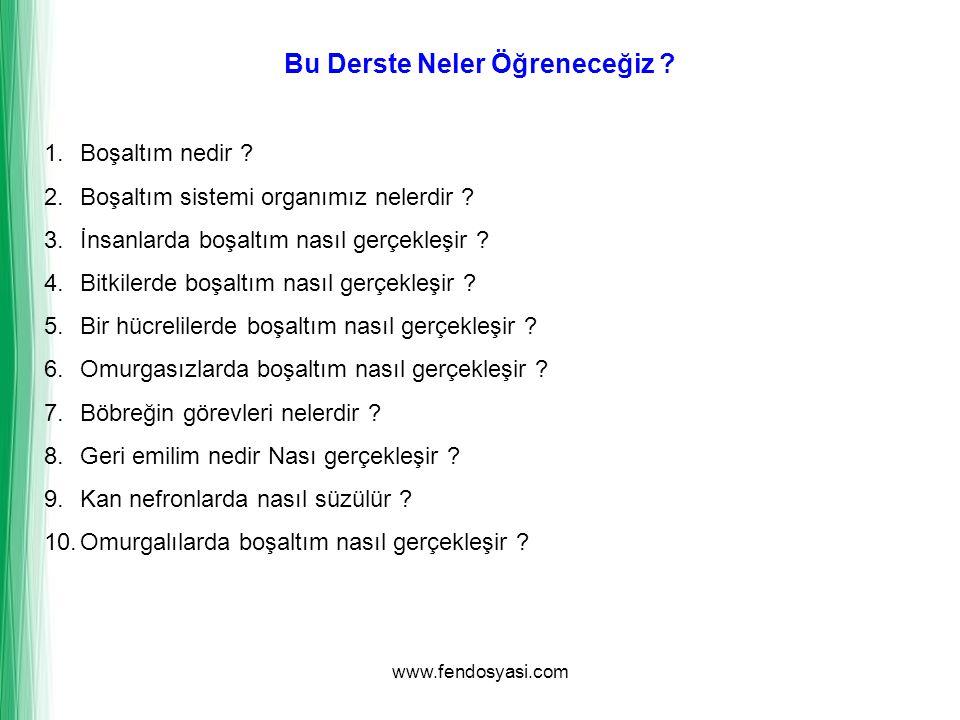 www.fendosyasi.com Bu Derste Neler Öğreneceğiz ? 1.Boşaltım nedir ? 2.Boşaltım sistemi organımız nelerdir ? 3.İnsanlarda boşaltım nasıl gerçekleşir ?