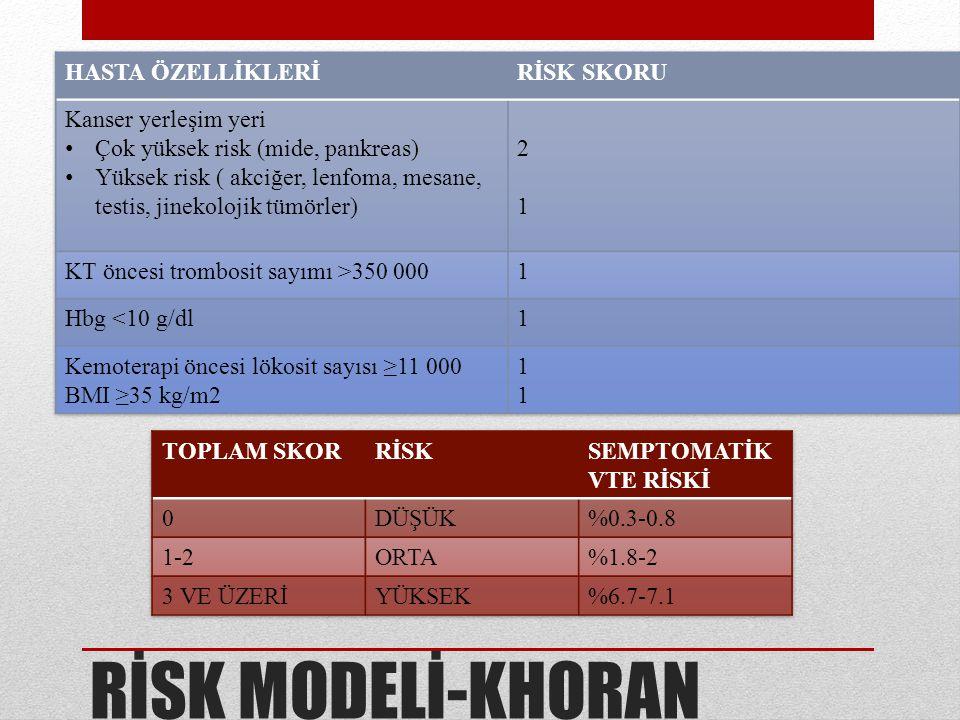 RİSK MODELİ-KHORAN