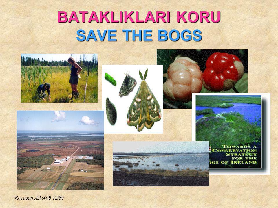 BATAKLIKLARI KORU SAVE THE BOGS Kavuşan JEM408 12/69