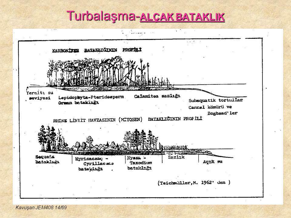 Turbalaşma- ALÇAK BATAKLIK Kavuşan JEM408 14/69