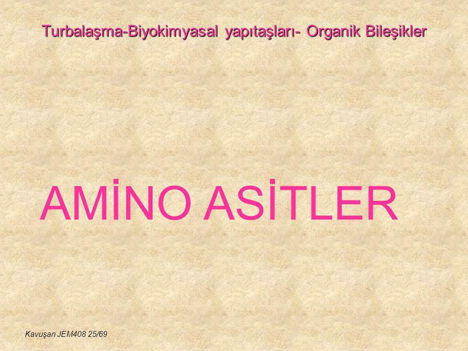 Turbalaşma-Biyokimyasal yapıtaşları- Organik Bileşikler AMİNO ASİTLER Kavuşan JEM408 25/69