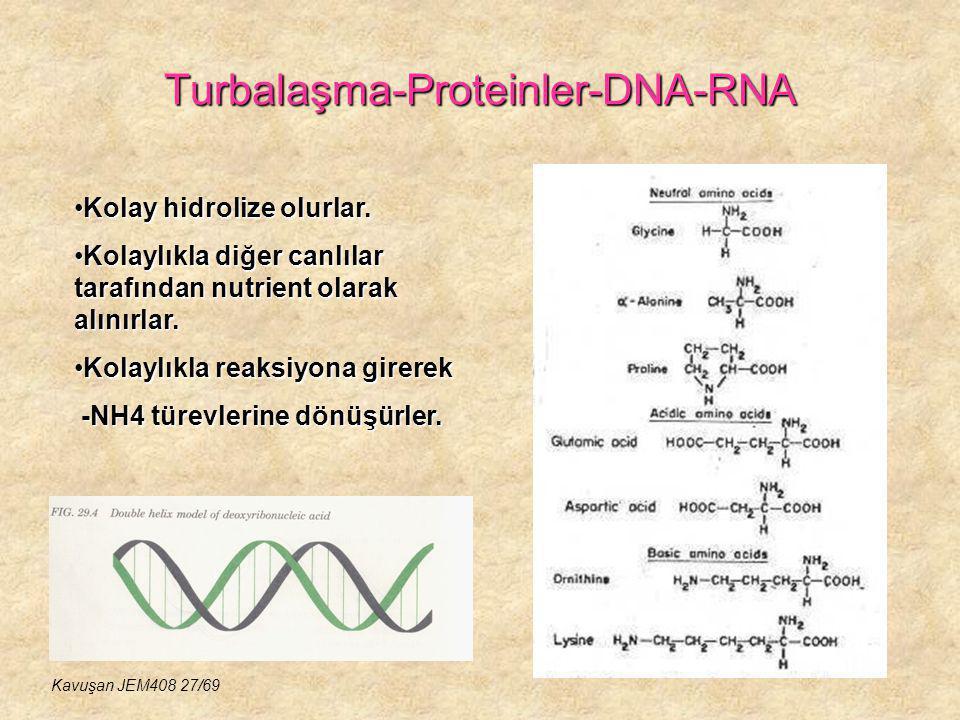 Turbalaşma-Proteinler-DNA-RNA Kolay hidrolize olurlar.Kolay hidrolize olurlar. Kolaylıkla diğer canlılar tarafından nutrient olarak alınırlar.Kolaylık