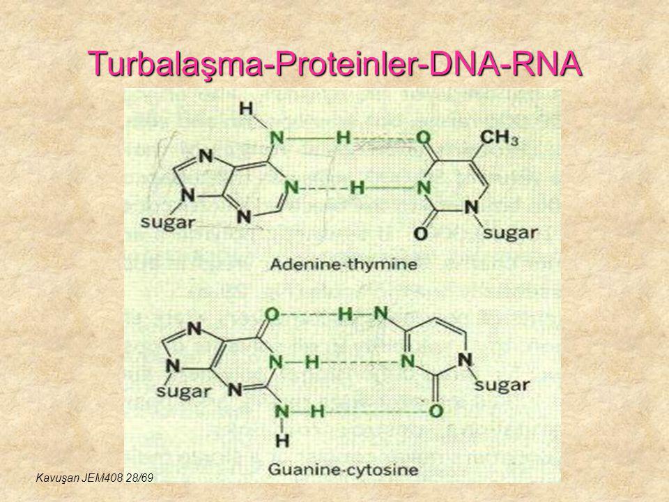 Turbalaşma-Proteinler-DNA-RNA Kavuşan JEM408 28/69