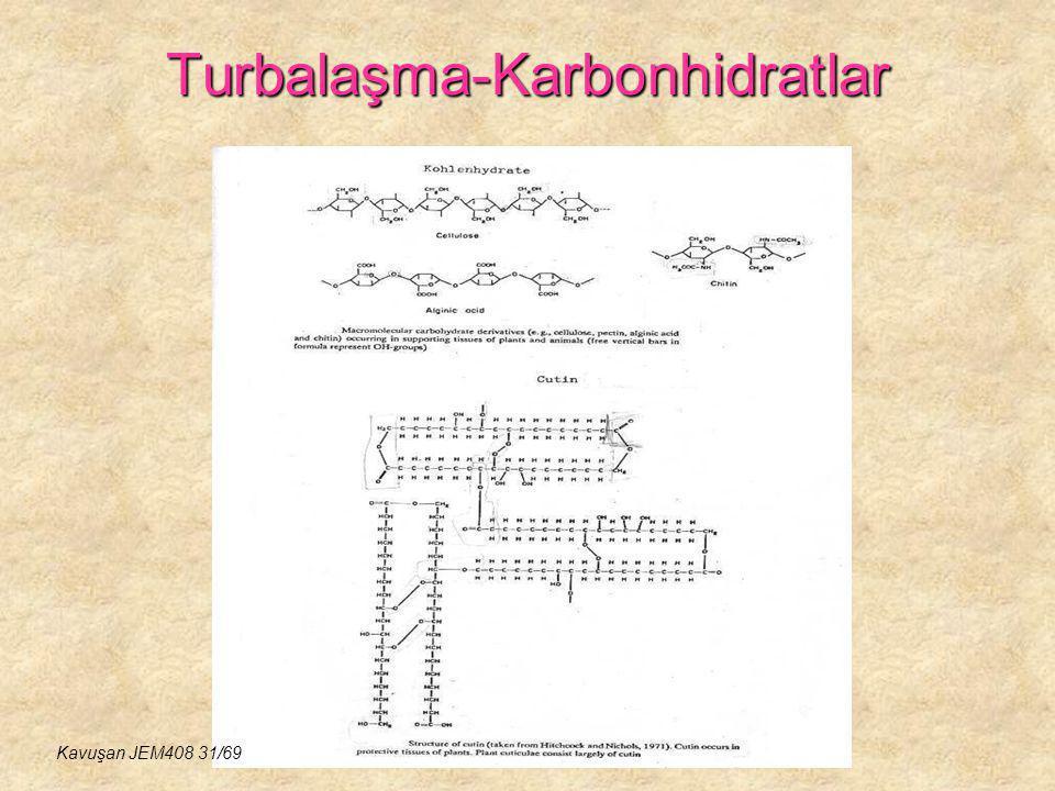 Turbalaşma-Karbonhidratlar Kavuşan JEM408 31/69