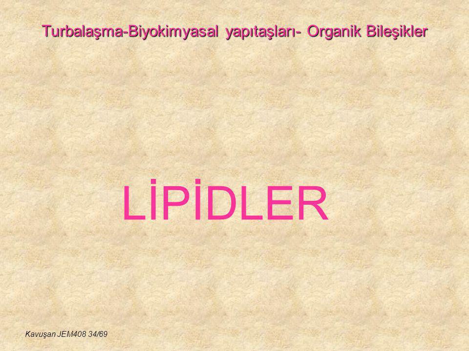 Turbalaşma-Biyokimyasal yapıtaşları- Organik Bileşikler LİPİDLER Kavuşan JEM408 34/69