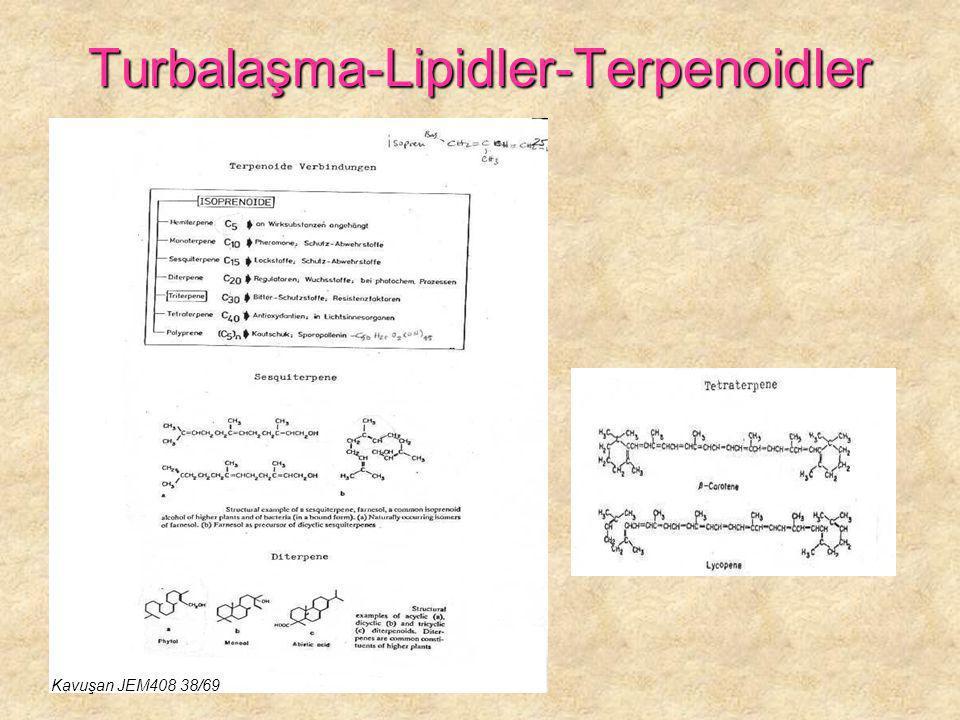 Turbalaşma-Lipidler-Terpenoidler Kavuşan JEM408 38/69