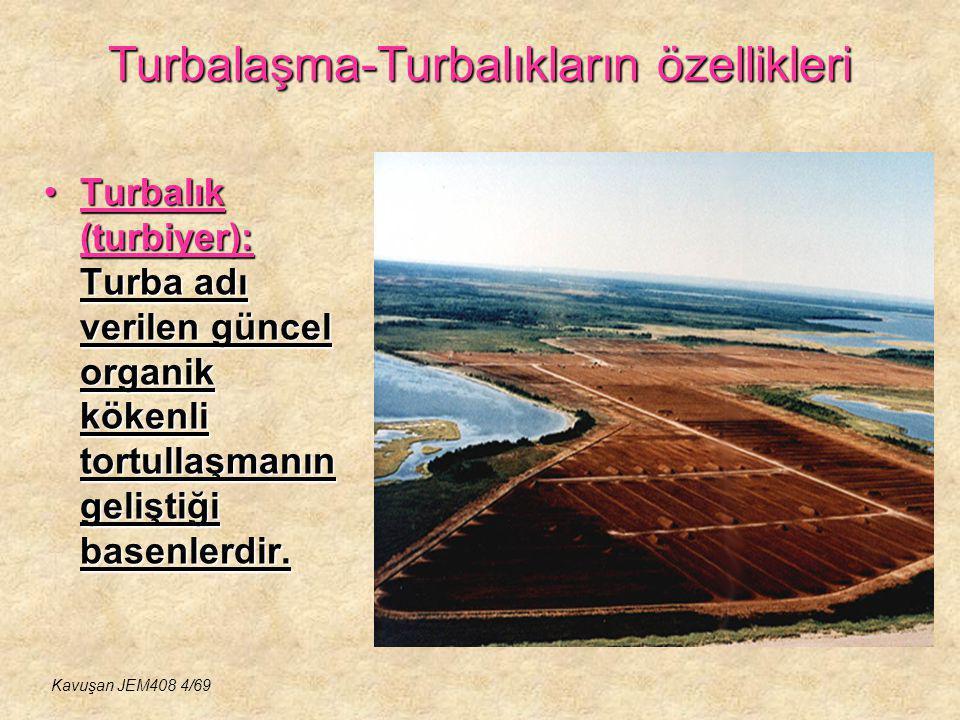 Turbalaşma-Turbalıkların özellikleri Turbalık (turbiyer): Turba adı verilen güncel organik kökenli tortullaşmanın geliştiği basenlerdir.Turbalık (turb