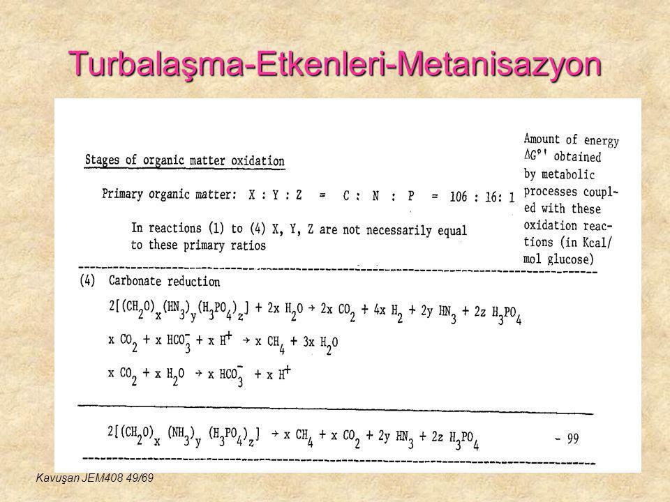 Turbalaşma-Etkenleri-Metanisazyon Kavuşan JEM408 49/69