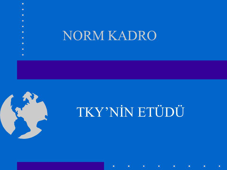 NORM KADRO TKY'NİN ETÜDÜ
