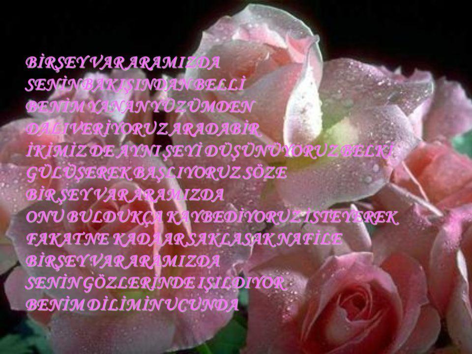...... Sen aşk nedir bilmeszin Beni sevmedinki Ağla ağlayabildiğin kadar Bütün güzellikler sende AŞK bendedir.....