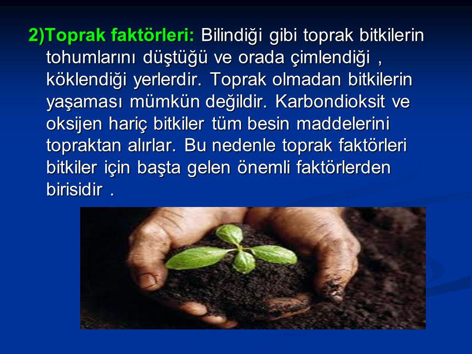 2)Toprak faktörleri: Bilindiği gibi toprak bitkilerin tohumlarını düştüğü ve orada çimlendiği, köklendiği yerlerdir. Toprak olmadan bitkilerin yaşamas