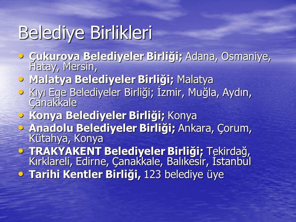 Türkiye Belediyeler Birliği 1945 yılında kamu yararına bir dernek olarak kurulan ve Bakanlar Kurulunun 21 Ağustos 2002 tarih ve 2002/4559 sayılı Kararıyla çalışmalarını BİRLİK statüsünde sürdürmeye devam etmektedir.