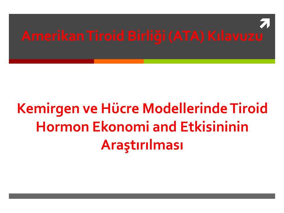  Amerikan Tiroid Birliği (ATA) Kılavuzu Kemirgen ve Hücre Modellerinde Tiroid Hormon Ekonomi and Etkisininin Araştırılması