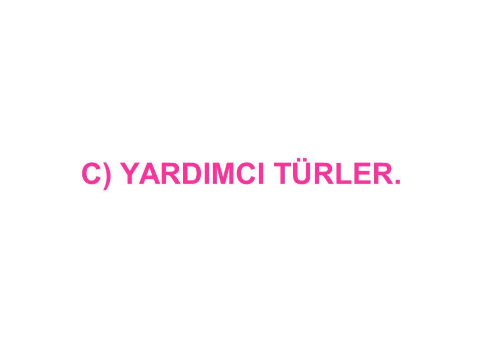 C) YARDIMCI TÜRLER.