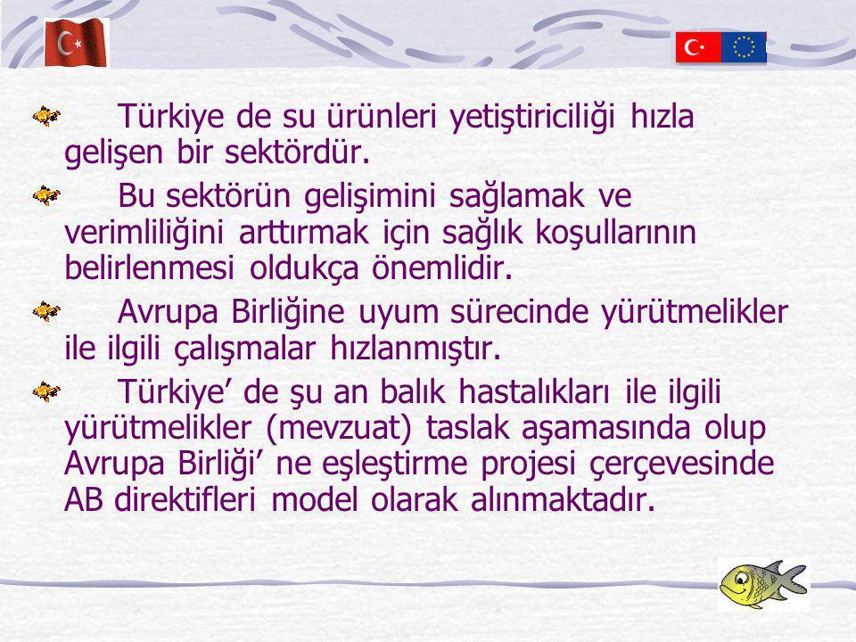 Türkiye ve Balık Hastalıkları  Tarım ve Köyişleri Bakanlığı (TKB)  Koruma ve Kontrol Genel Müdürlüğü (KKGM) Su ürünleri sağlığı Hayvan Sağlığı ve Karantina  Tarım İl ve İlçe Müdürlükleri  Veteriner Kontrol ve Araştırma Enstitüleri